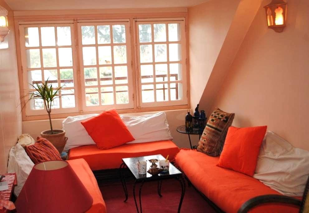 Amboise apartment on a island Loire - Amboise - Apartamento
