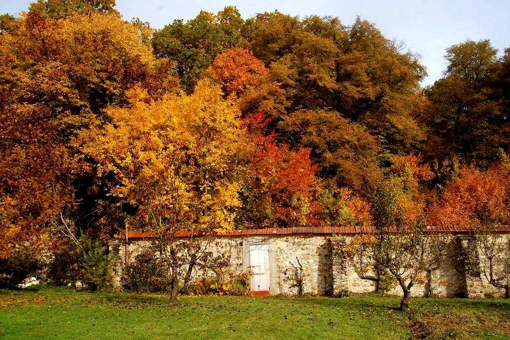 Studio au parc historique de Méridon à Chevreuse - Chevreuse - Appartement