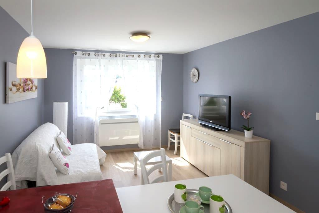 APPARTEMENT RENOVE A RODEZ PROCHE DU CENTRE VILLE - Rodez - Apartamento