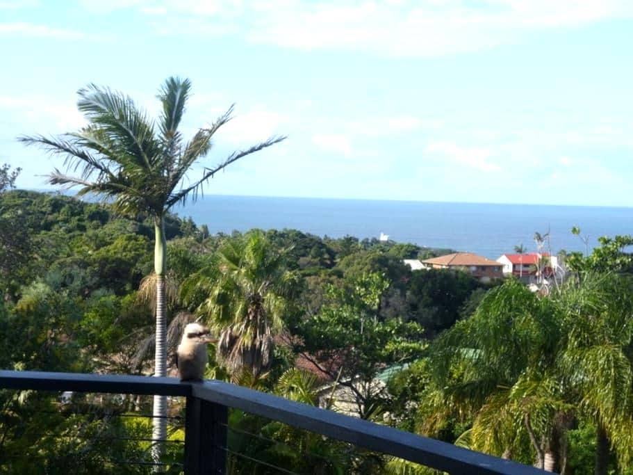 Paradise in Port, Lighthouse Beach - Port Macquarie - Casa