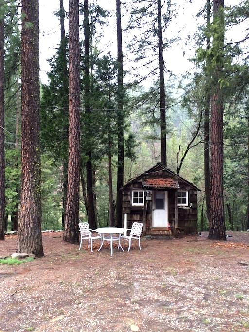 Cute Rustic Cabin in the Woods!  - paxton - Cabana