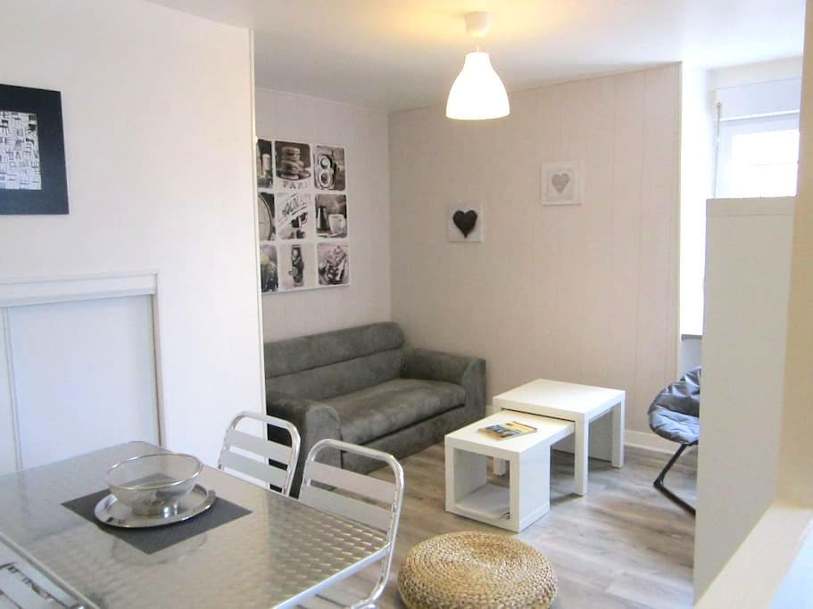LAZARE HOME BREAK CITY ANGERS - Angers - Lejlighed