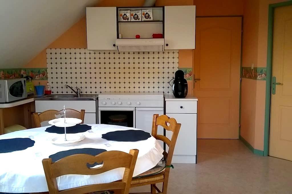 Appartement de 50m2 très lumineux - Locon - Квартира