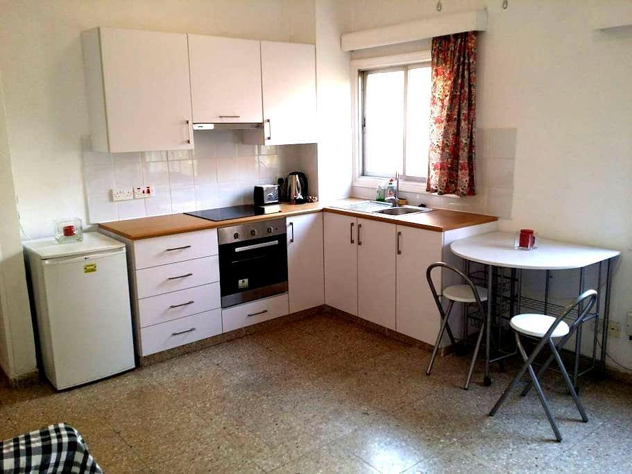 1 bedroom flat in the City Center!! - Nicosia - Departamento