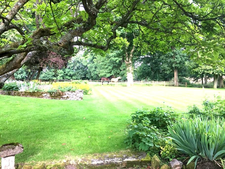 Lovely Country cottage - Ockley - Dom