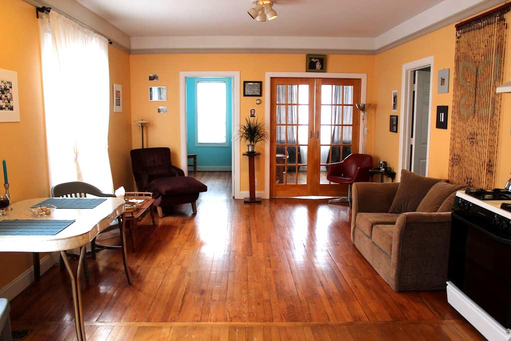Spacious 1st Fl Apartment Hamtramck - Hamtramck - Appartement