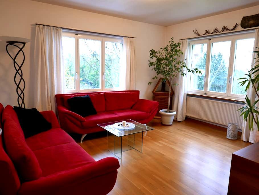 Hübsche 3 1/2 Zimmerwohnung nähe Basel - Himmelried - Leilighet