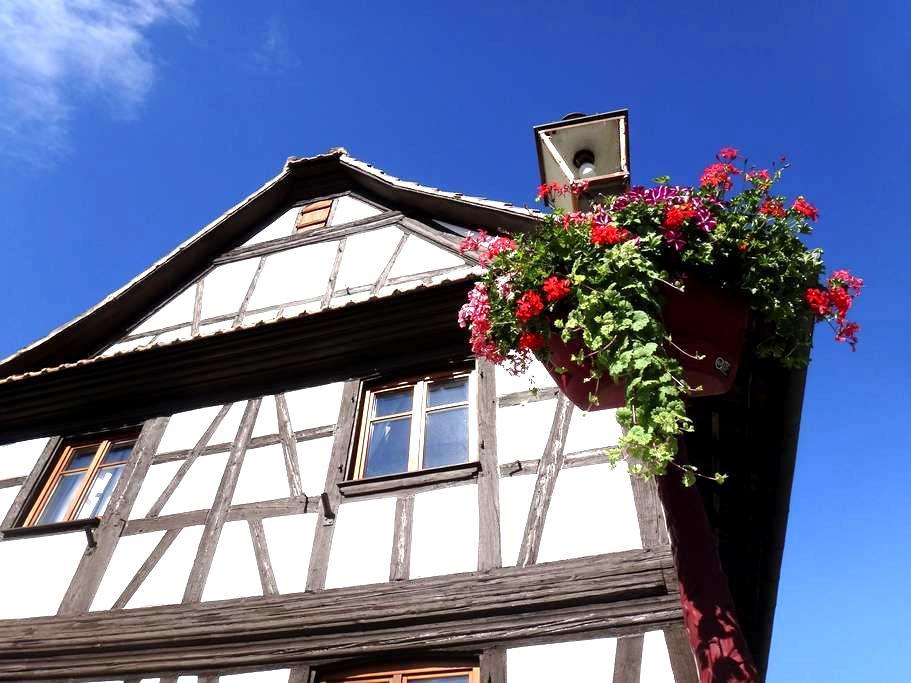 Maison 9 personnes STRASBOURG - Geispolsheim - Huis