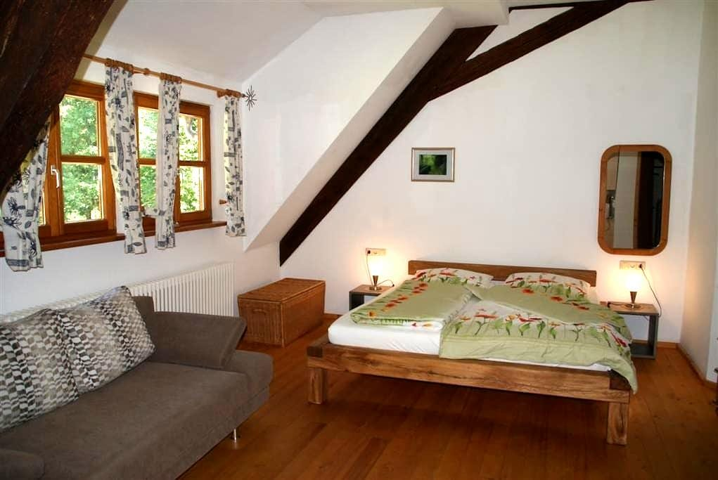 Apartment in traditional farm house - Schenkenzell - Departamento