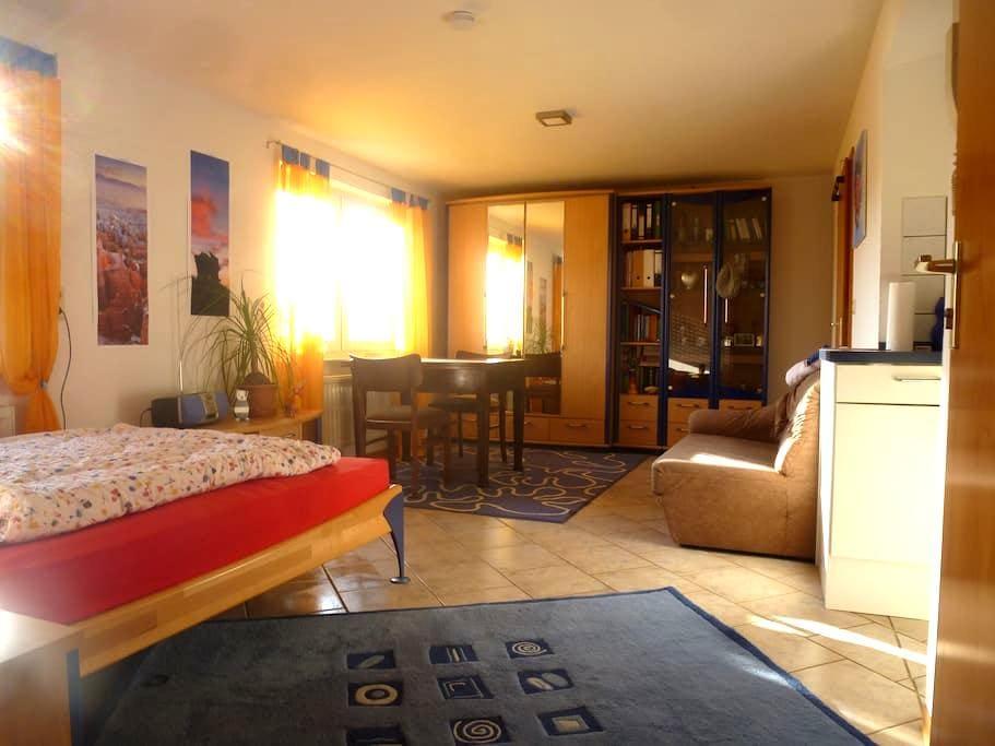 Ruhiges, gemütliches 1 Zi. Appartement im Grünen - Nordheim - Leilighet