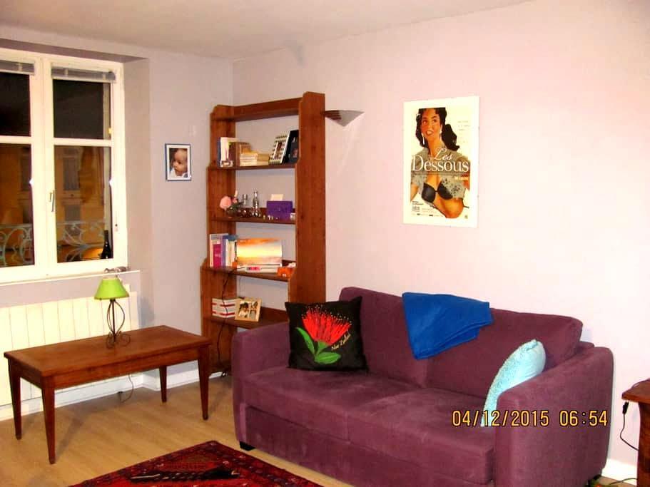 Lumière en centre ville - Bourg-en-Bresse - Appartement