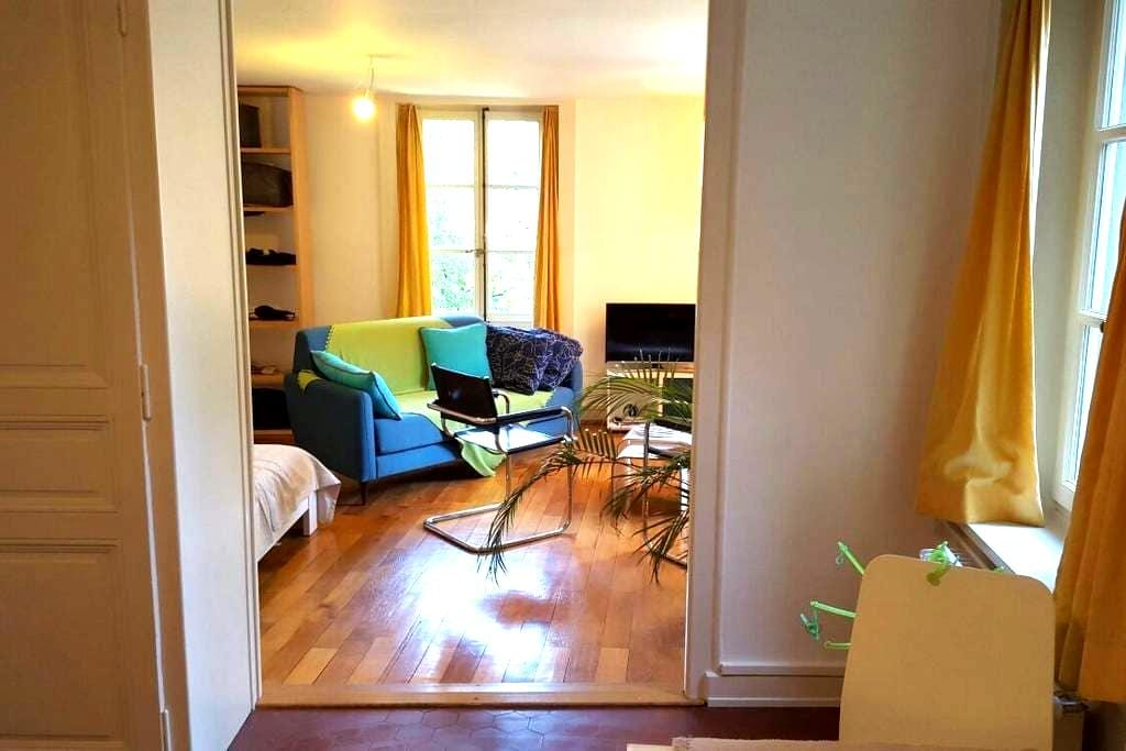 Logement de charme à Carouge - Carouge - Appartement