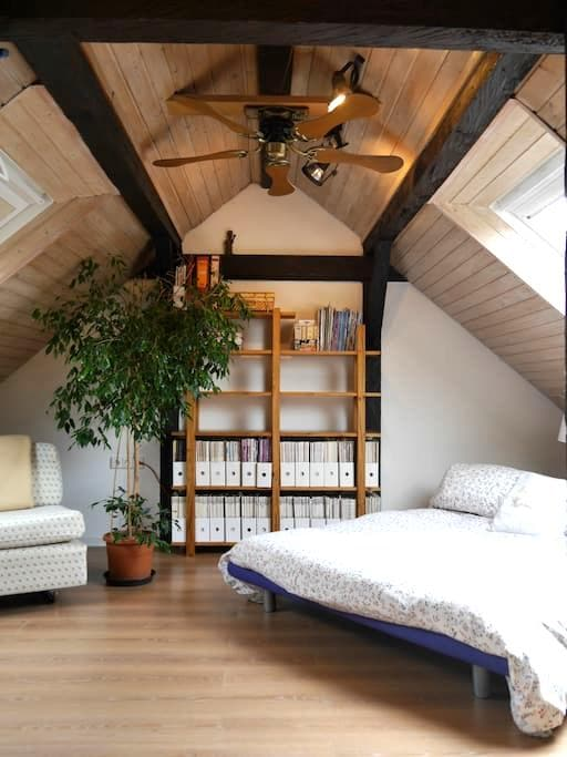 nice, under the roof with bathroom! - Ulm - House