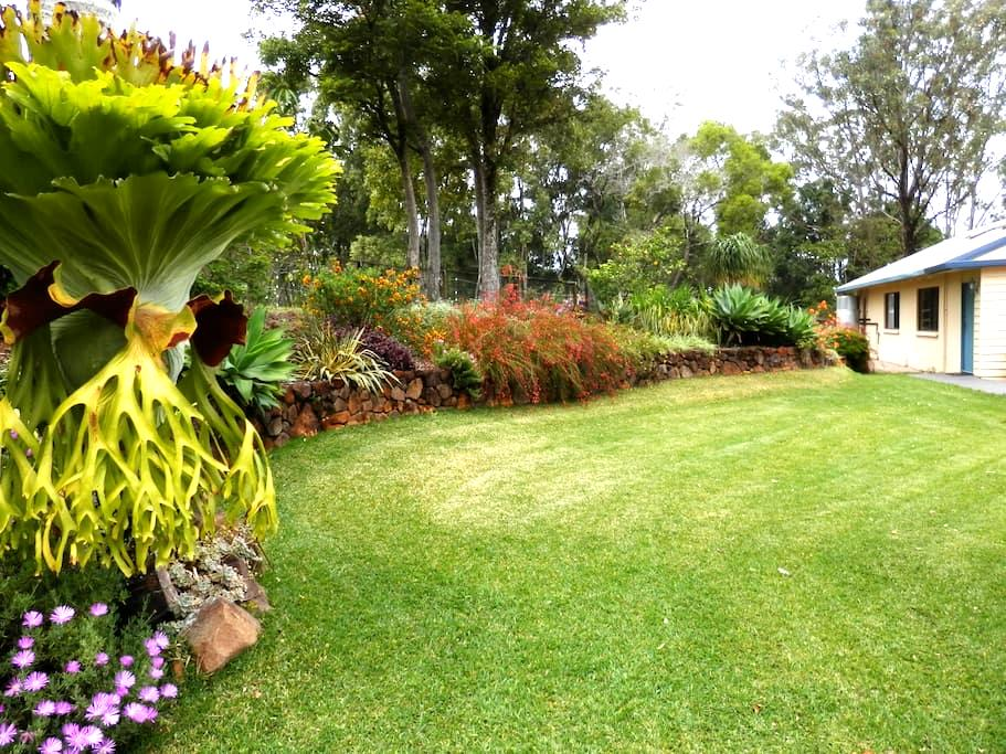 Obilo Lodge, panoramic views, peace in rainforest! - Mapleton - Other