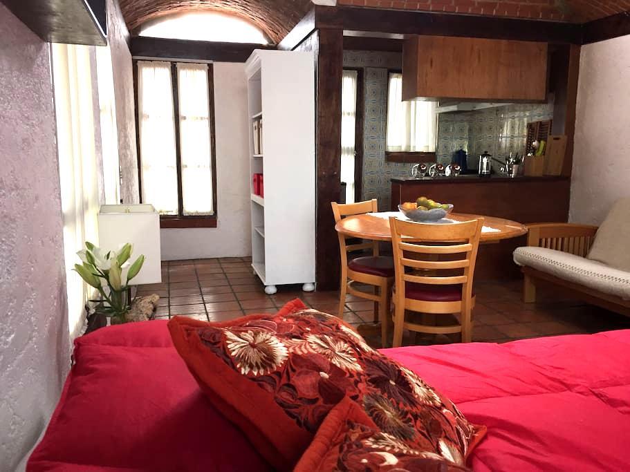 Lovely apt in Frida's neighborhood. - Ciudad de México - Appartement