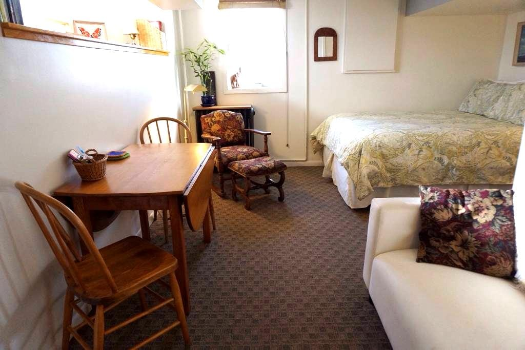 Complete Sweet Apartment in South Minneapolis - Minneapolis - Apartamento
