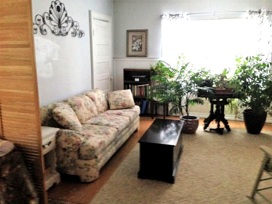 The Ideal apartment in Buffalo, New York - Buffalo - Appartement
