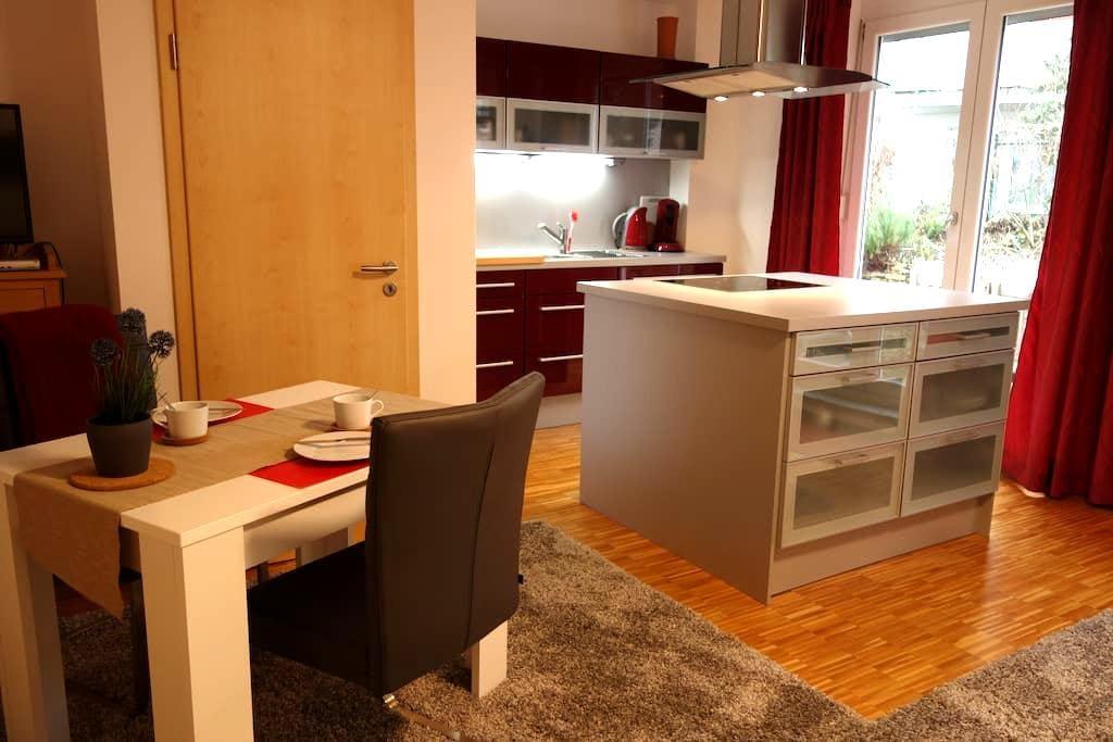 1-Zi Garten-App. Mainz, HBF nah - Mainz - Wohnung