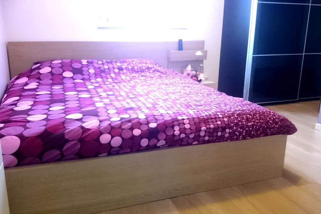 Cozy bedroom in Alsace's Heart - Mussig - 一軒家