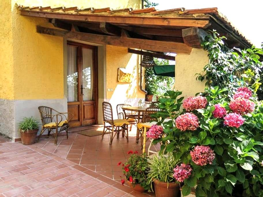 Country house in beautiful olive grove in Tuscany - Uzzano - Wohnung