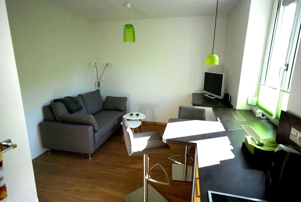 Ruhiges Apartment in Leoben - Leoben - Apartmen
