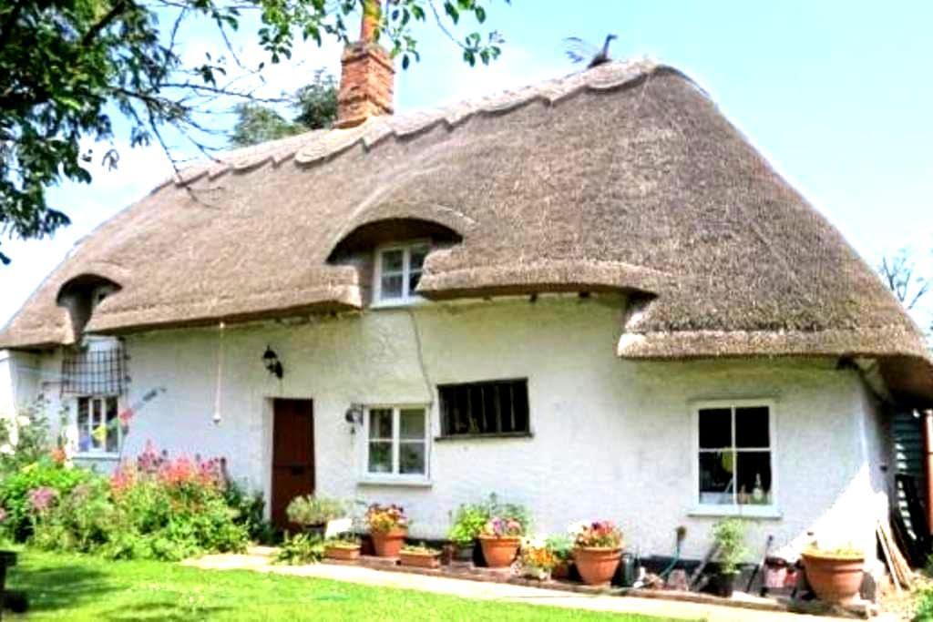Entire Thatched Cottage - Melbourn - Casa