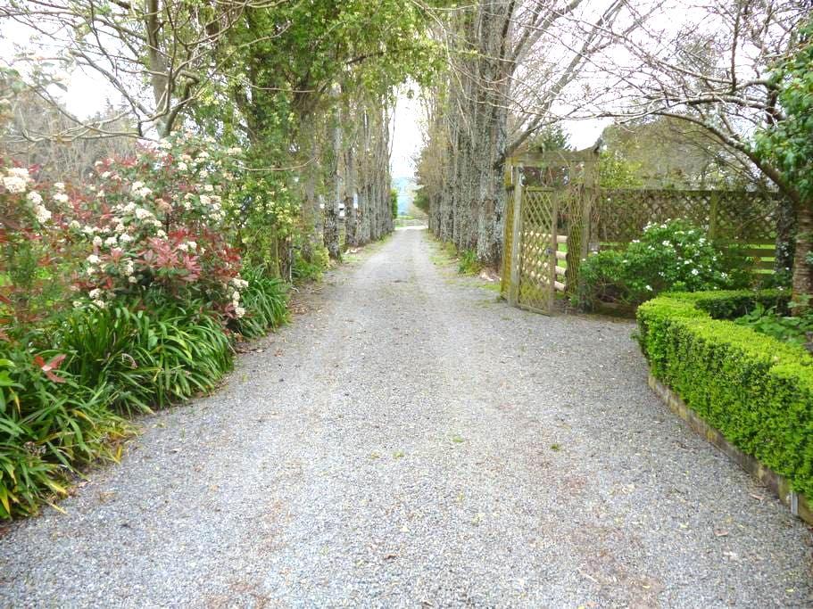 Aratahi Cottage - Carterton - Casa de huéspedes