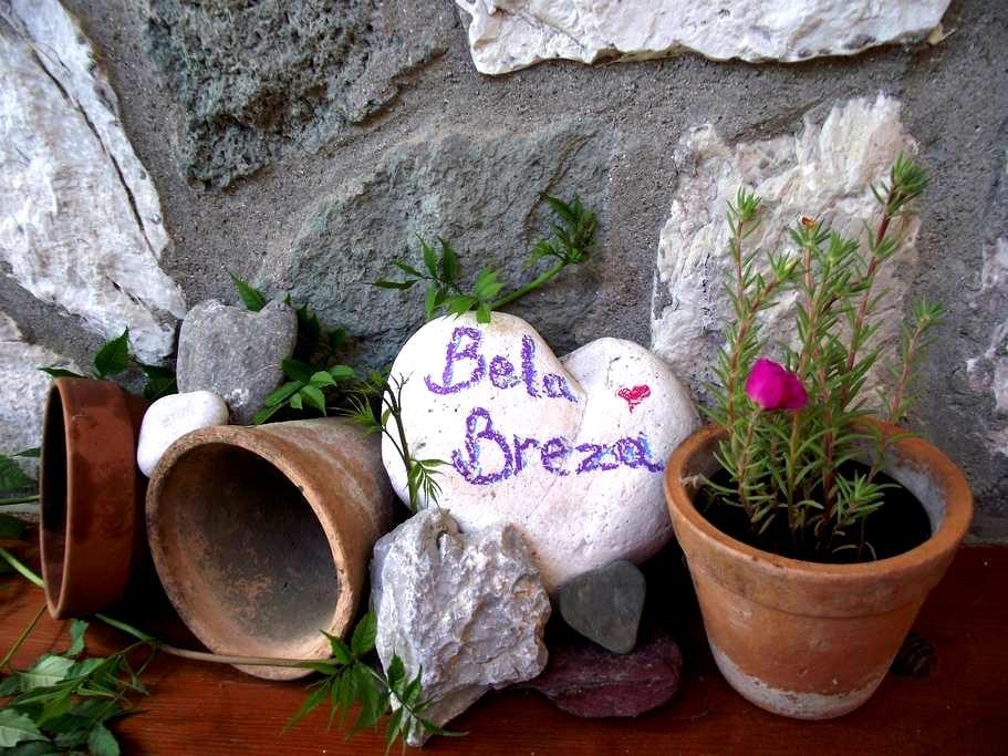 Bela Breza; The Perfect Mountain Escape - Mozirje - Appartement