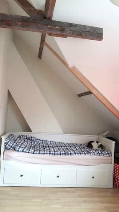 Ruime kamer in gezellig oud huis - Энсхеде - Дом