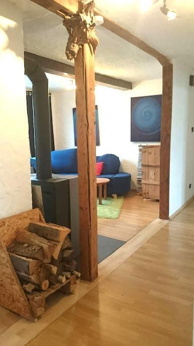 Gemütliche helle 2,5 Zi Whg in ES - Esslingen am Neckar - Apartemen