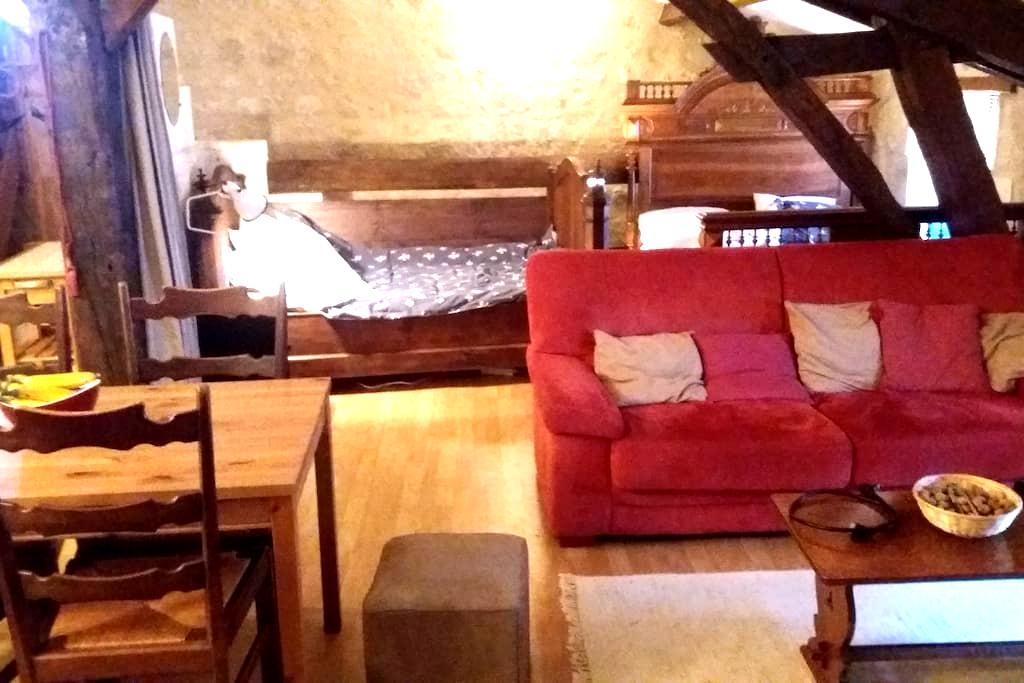 Cosy family accommodation - Aubeterre-sur-Dronne - Leilighet