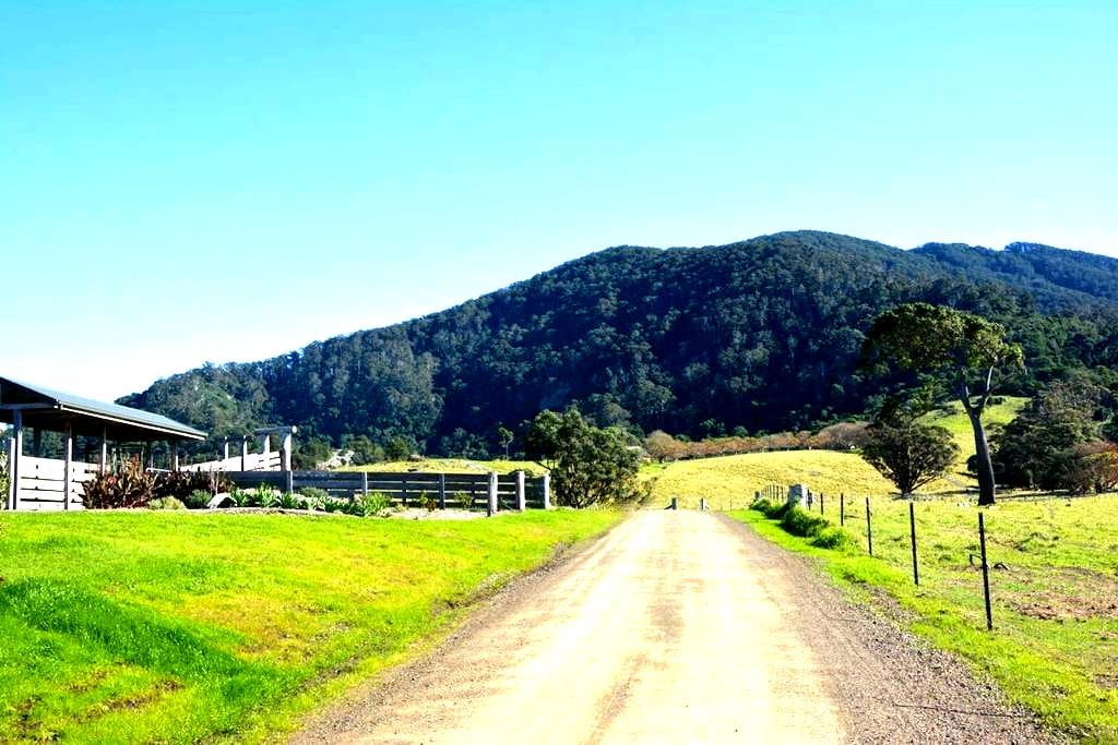 Mountain View Farm - Palm Cottage - Tilba Tilba - Wohnung