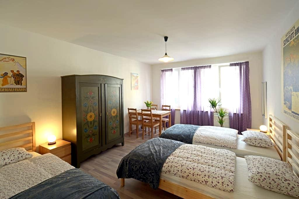 Three-bed room in Interlaken - Interlaken - Apartament
