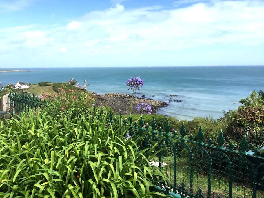 Cornish seaside cottage, Coverack - Coverack - Casa