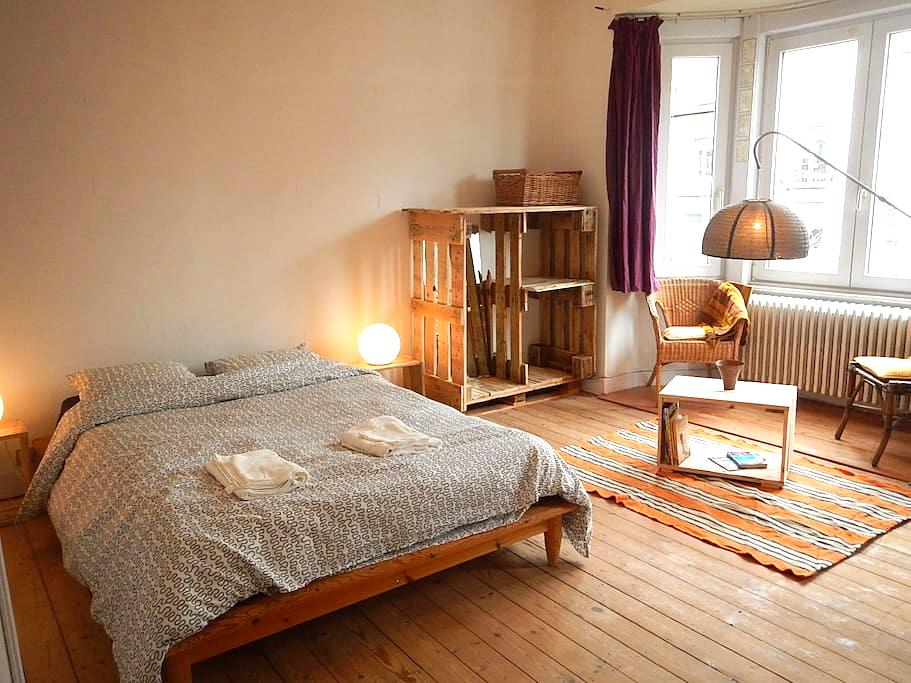Big room in a house with garden - ワーテルマール=ボワフォール (Watermael-Boitsfort) - 一軒家