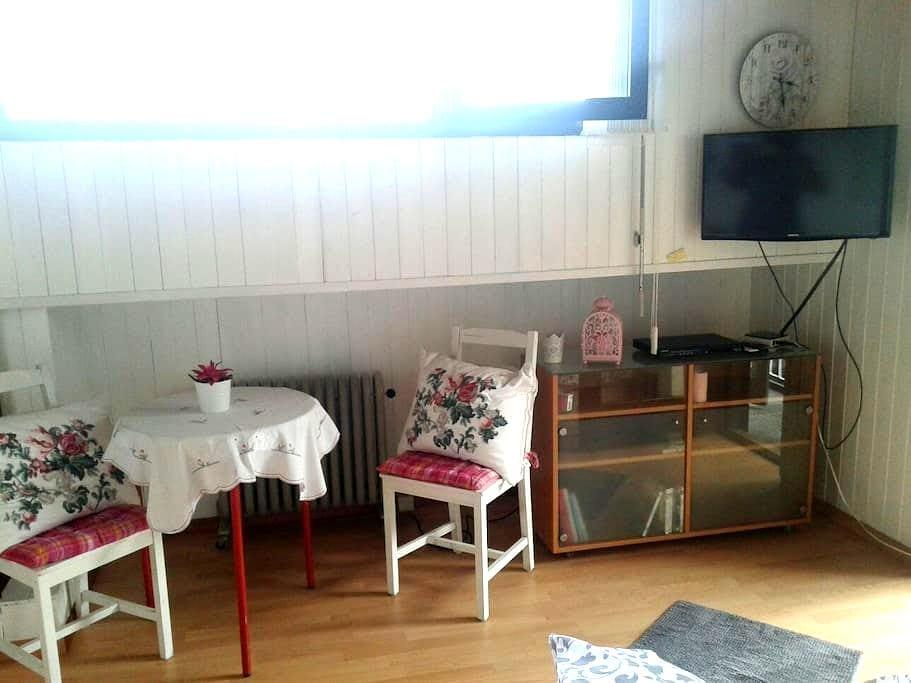 Kleiner gemuetliche ferien Wohnung - Gordola - 公寓