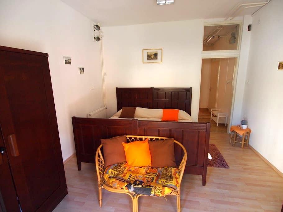Apartment Fani in Rogaška Slatina - Rogaška Slatina - Apartamento