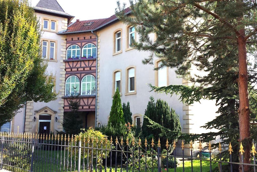 First floor of a nice duplex - Metz - Appartement
