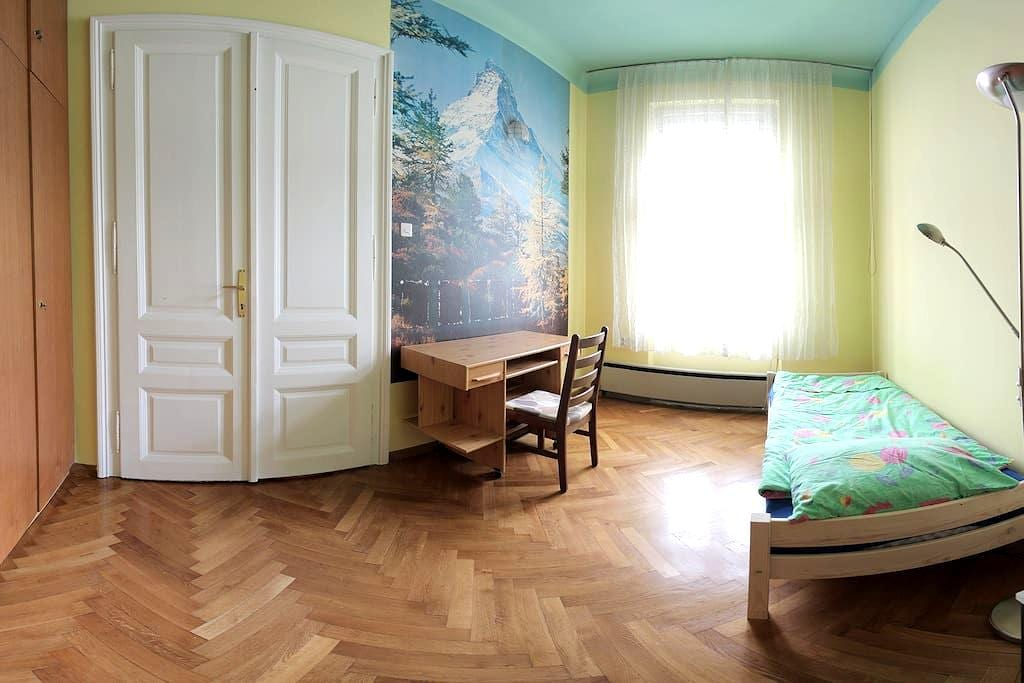 Spacious rooms in the best location - Ljubljana - Lejlighed