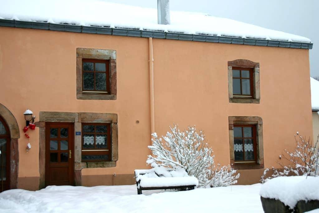 APPARTEMENT 80M² RENOVE DANS ANCIENNE FERME VOSGES - La Chapelle-devant-Bruyères - Квартира