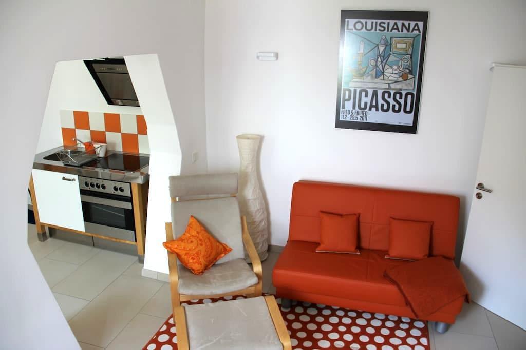 Modern maisonette apartment terrace - マインツ - 一軒家