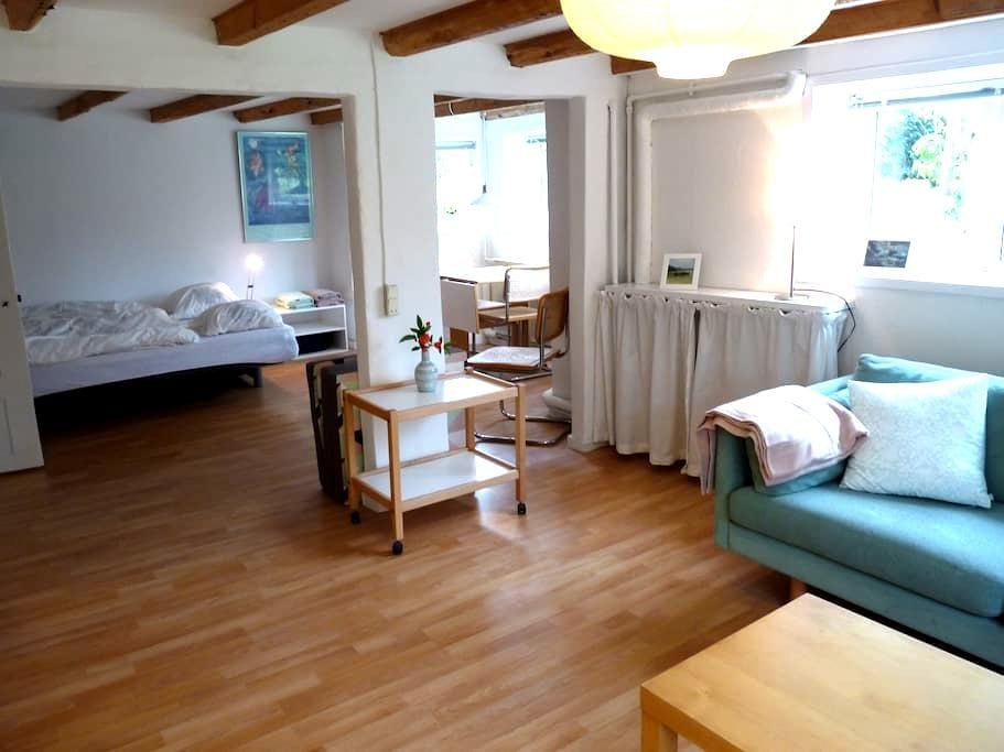 Bright 45 m2 flat (basement), 3 km to city centre - オーフス - 別荘