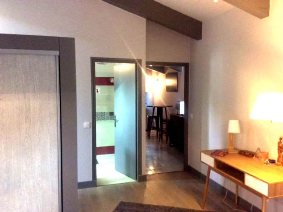 Sejour+ coin cuisine, et une chambre Lit 160 - Pexiora - Leilighet