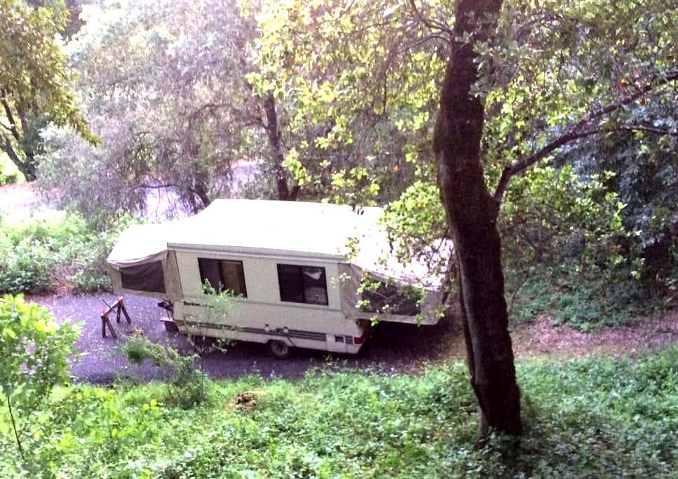 RRV Camper - Forestville - Bed & Breakfast
