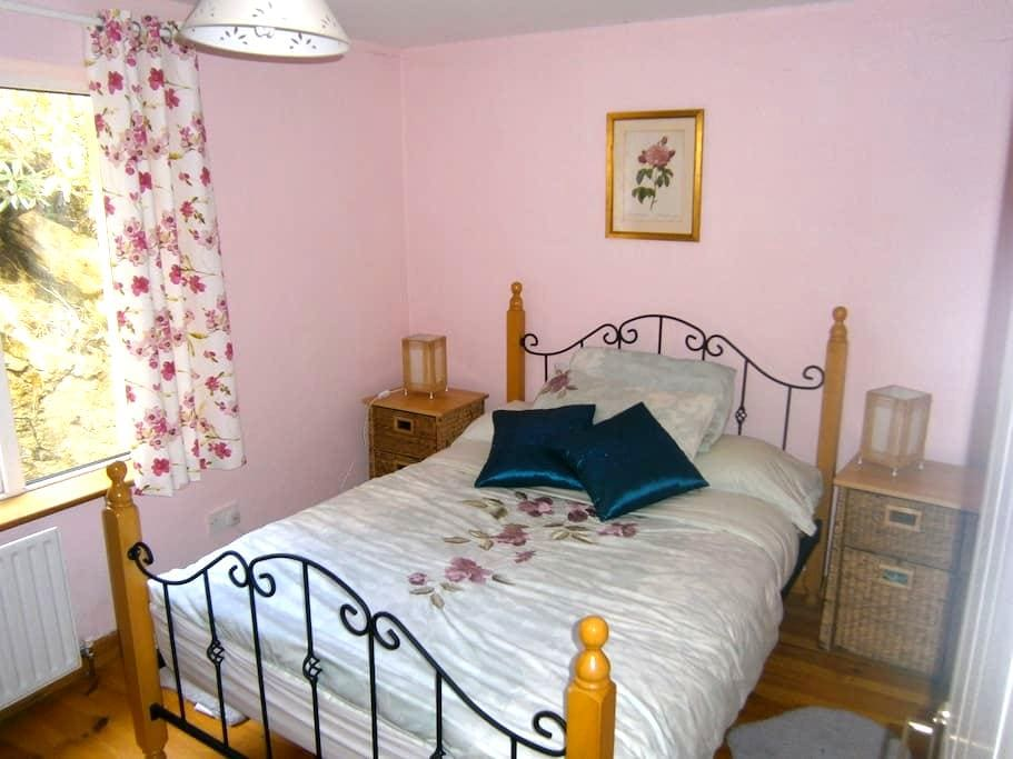Double bedroom, beautiful location. - Galway - Kulübe