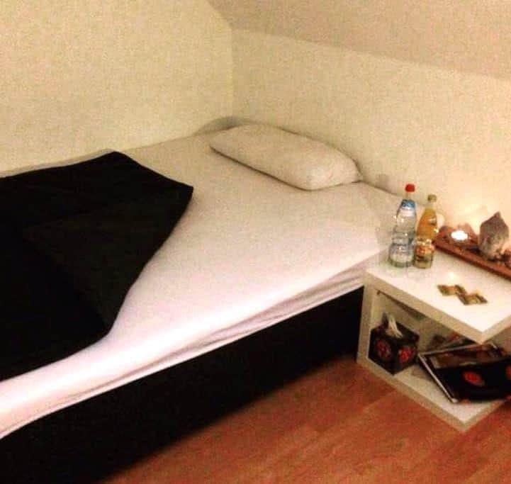 Zimmer in einer zentralen Dachgeschosswohnung - Landshut - Daire