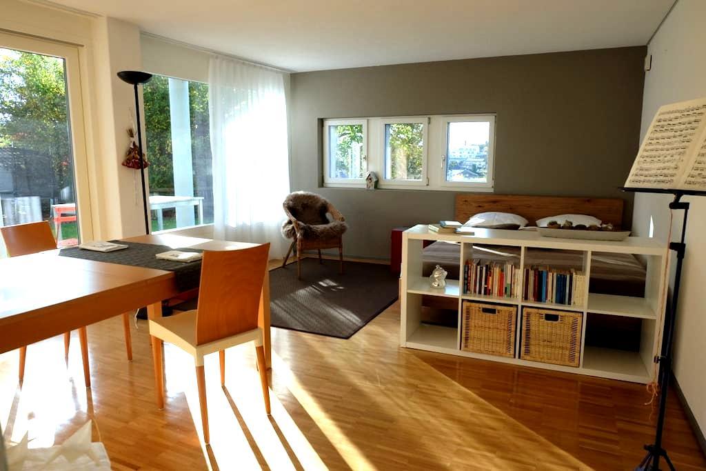 Studio sonnig mit Küche und Bad - Eschenbach - Condomínio