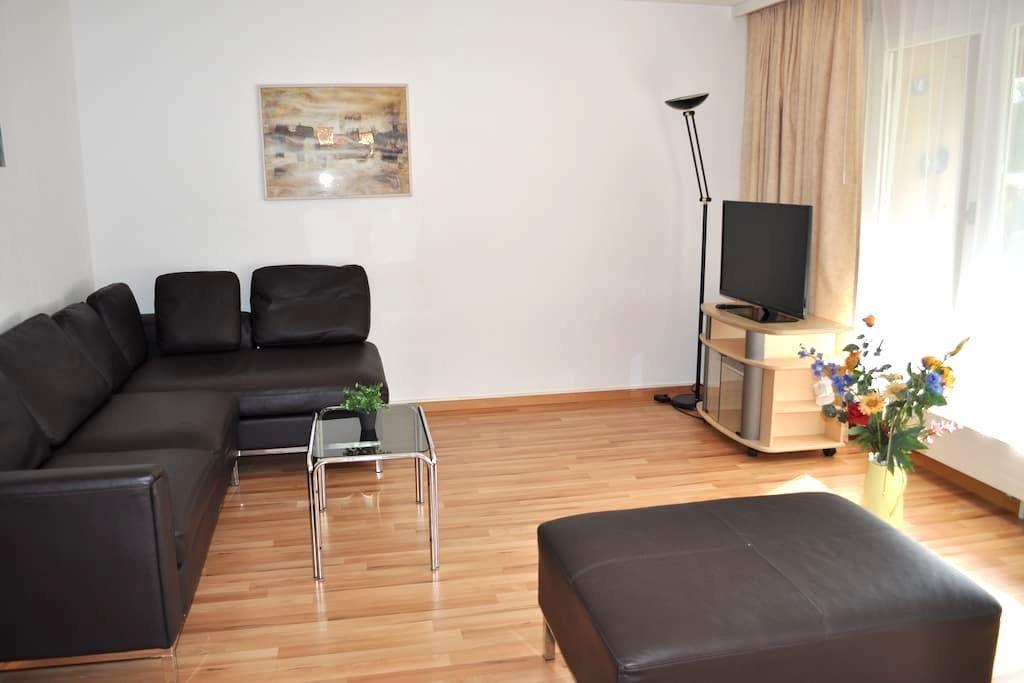 nice apartment 76m2 near Zurich - Brugg - Lägenhet