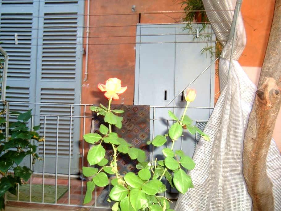 Iris blu - Alessandria - Huoneisto