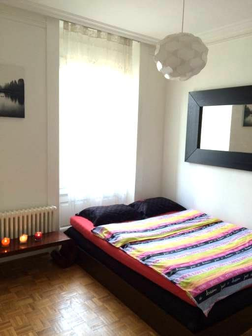 Cozy apt in the centre of Geneva!!! - Geneve - Leilighet